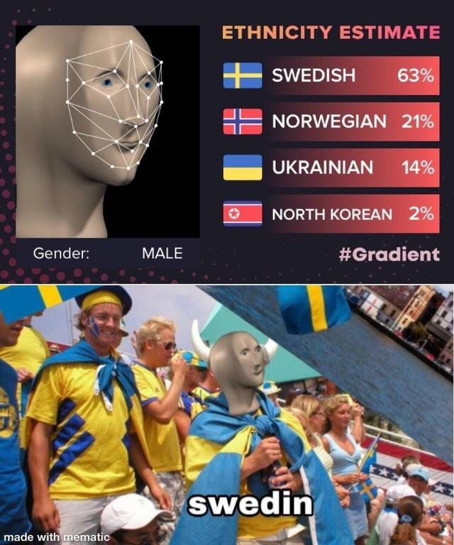 Fan - ETHNICITY ESTIMATE SWEDISH 63% NORWEGIAN 21% UKRAINIAN 14% NORTH KOREAN 2% Gender: MALE #Gradient swedin made with mematic