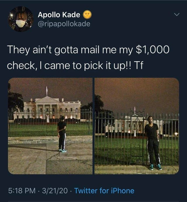Text - Apollo Kade @ripapollokade They ain't gotta mail me my $1,000 check, I came to pick it up!! Tf 5:18 PM 3/21/20 · Twitter for iPhone