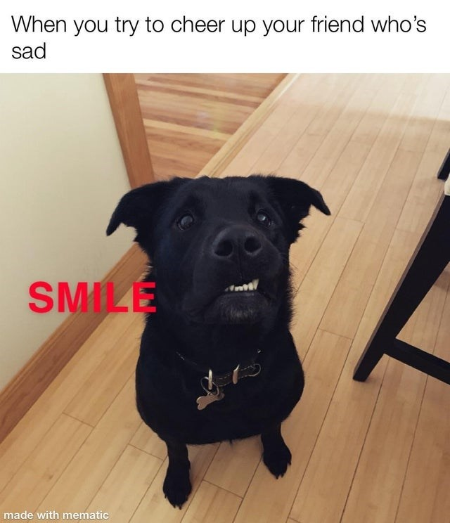 Dog breed - When you try to cheer up your friend who's sad SMILE Ant made with mematic