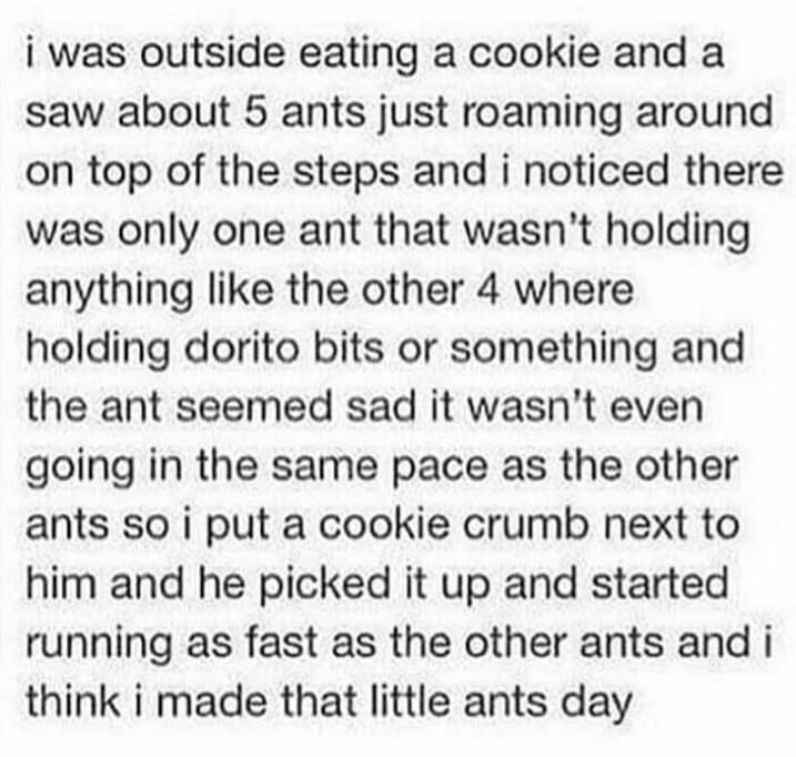 Text - i was outside eating a cookie and a saw about 5 ants just roaming around on top of the steps and i noticed there was only one ant that wasn't holding anything like the other 4 where holding dorito bits or something and the ant seemed sad it wasn't even going in the same pace as the other ants so i put a cookie crumb next to him and he picked it up and started running as fast as the other ants and i think i made that little ants day