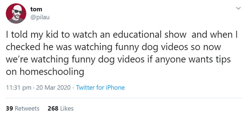 Text - tom @pilau I told my kid to watch an educational show and when I checked he was watching funny dog videos so now we're watching funny dog videos if anyone wants tips on homeschooling 11:31 pm · 20 Mar 2020 · Twitter for iPhone 39 Retweets 268 Likes