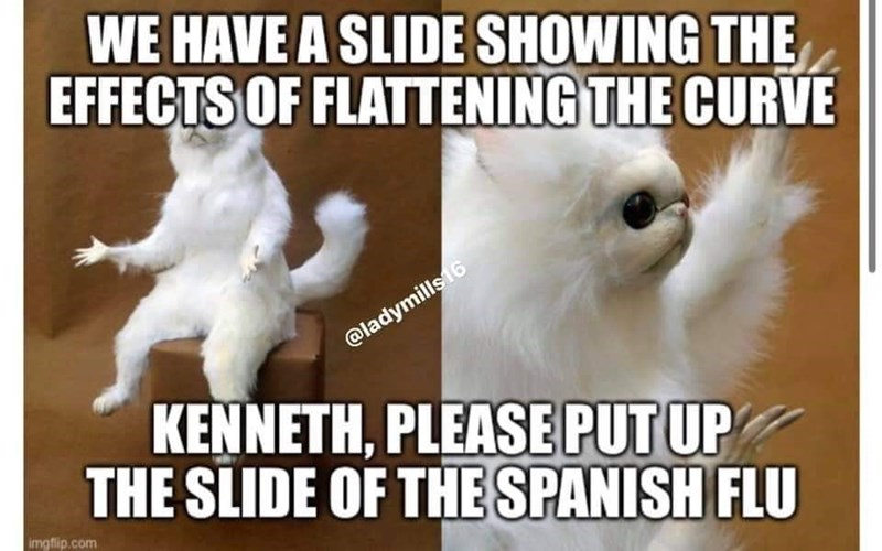 Photo caption - WE HAVE A SLIDE SHOWING THE EFFECTS OF FLATTENING THE CURVE @ladymills16 KENNETH, PLEASE PUT UP THE SLIDE OF THE SPANISH FLU imgfip.com