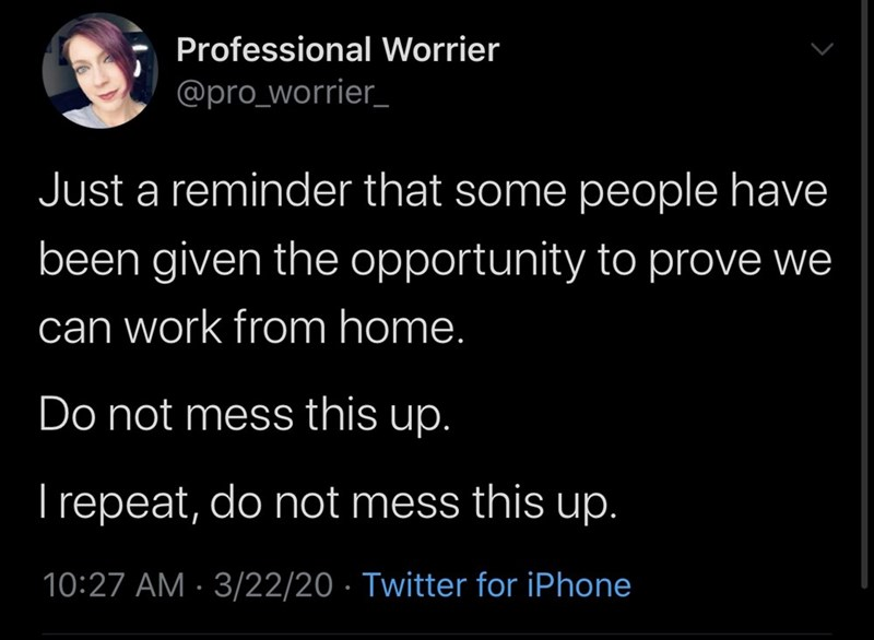 Text - Professional Worrier @pro_worrier_ Just a reminder that some people have been given the opportunity to prove we can work from home. Do not mess this up. T repeat, do not mess this up. 10:27 AM · 3/22/20 · Twitter for iPhone