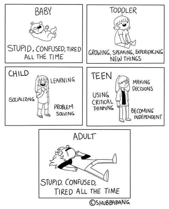 Text - BABY TODDLER STUPID, CONFUSED, TIRED ALL THE TIME GROWING, SPEAKING, EXPERIENCING NEW THINGS CHILD TEEN LEARNING MAKING DECISIONS USING CRITICAL THINKING SOCIALIZING PROBLEM BECOMING INDEPENDENT SOVING ADULT STUPID. CONFUSED, TIRED ALL THE TIME ©SHUBBABANG