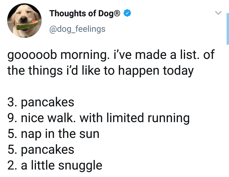 Text - Thoughts of Dog® O @dog_feelings gooooob morning. i've made a list. of the things i'd like to happen today 3. pancakes 9. nice walk. with limited running 5. nap in the sun 5. pancakes 2. a little snuggle