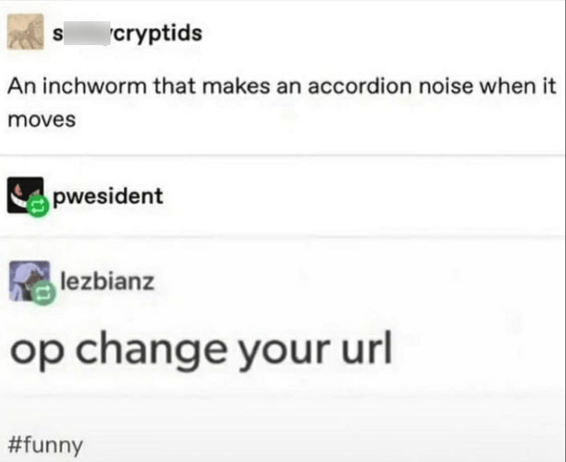 Text - cryptids An inchworm that makes an accordion noise when it moves pwesident lezbianz op change your url #funny