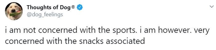 Text - Thoughts of Dog® O @dog_feelings i am not concerned with the sports. i am however. very concerned with the snacks associated