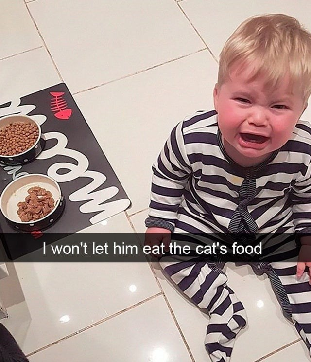 Child - I won't let him eat the cat's food me