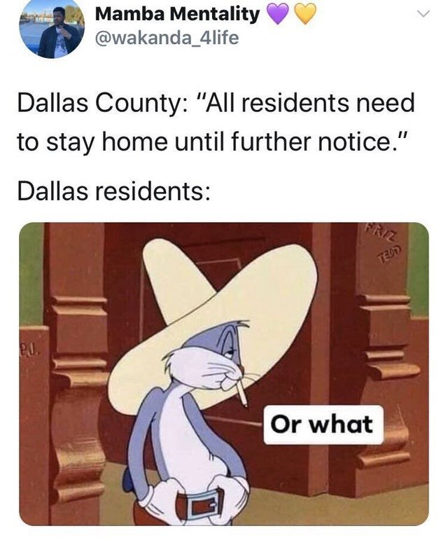 "Cartoon - Mamba Mentality @wakanda_4life Dallas County: ""All residents need to stay home until further notice."" Dallas residents: FRIZ TEDD Or what"