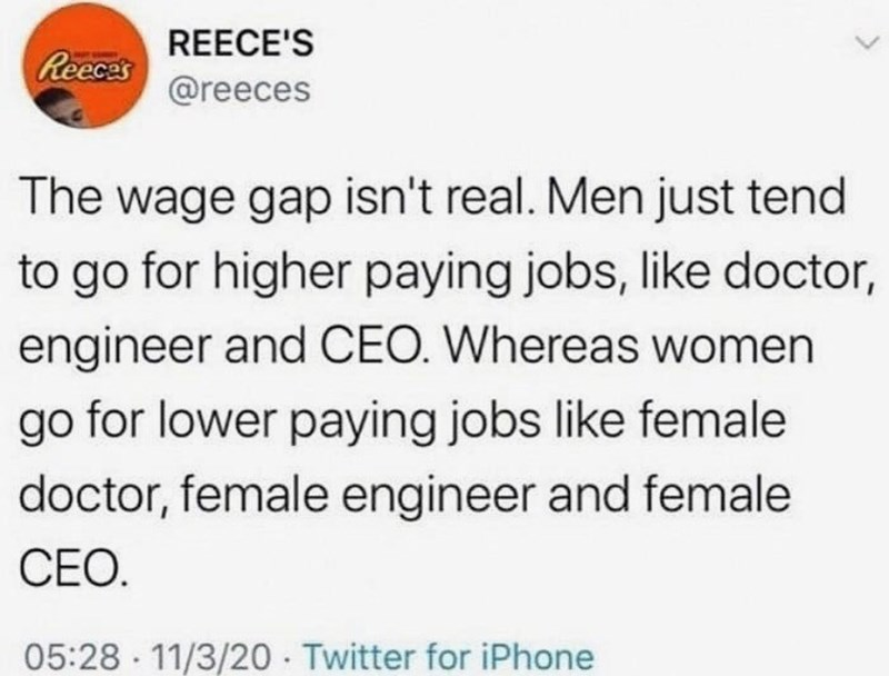 Text - REECE'S Reeces @reeces The wage gap isn't real. Men just tend to go for higher paying jobs, like doctor, engineer and CEO. Whereas women go for lower paying jobs like female doctor, female engineer and female CEO. 05:28 11/3/20 · Twitter for iPhone
