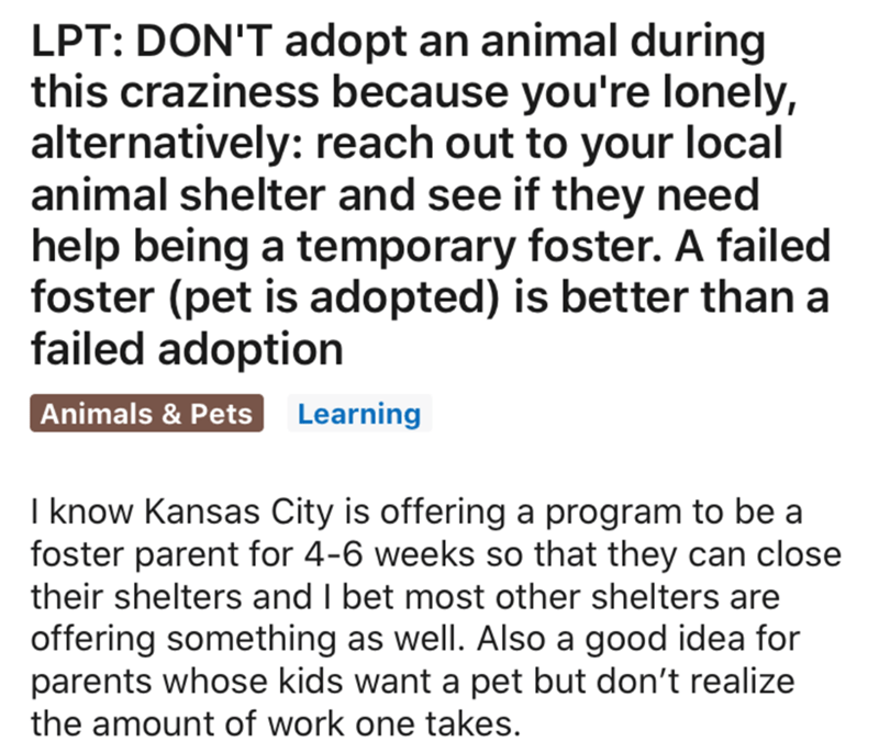 Text - LPT: DON'T adopt an animal during this craziness because you're lonely, alternatively: reach out to your local animal shelter and see if they need help being a temporary foster. A failed foster (pet is adopted) is better than a failed adoption Animals & Pets Learning I know Kansas City is offering a program to be a foster parent for 4-6 weeks so that they can close their shelters and I bet most other shelters are offering something as well. Also a good idea for parents whose kids want a p