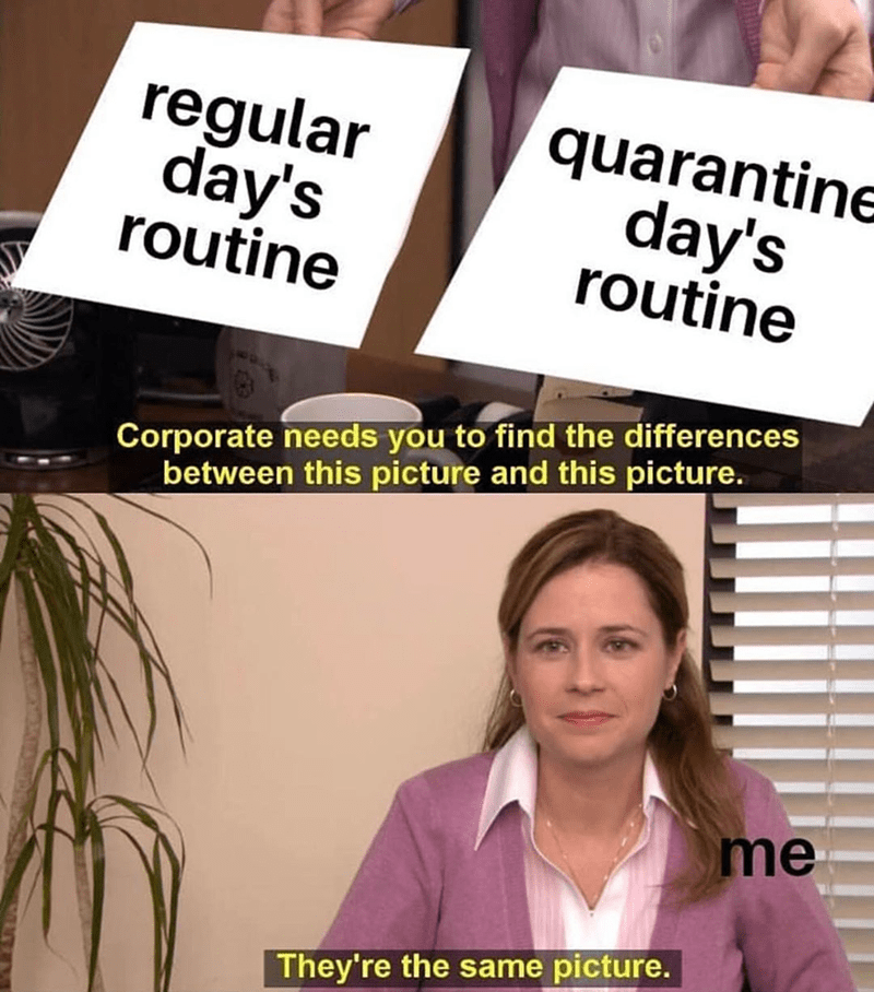 Funny meme about the office, office memes, same picture, quarantine routine, coronavirus, coronavirus memes, covid-19 | regular day's routine quarantine day's routine corporate needs you to find the differences between this picture and this picture they're the same picture