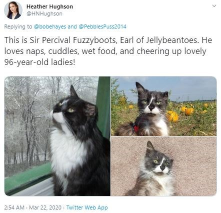 Cat - Heather Hughson @HNHughson Replying to @bobehayes and @PebblesPuss2014 This is Sir Percival Fuzzyboots, Earl of Jellybeantoes. He loves naps, cuddles, wet food, and cheering up lovely 96-year-old ladies! 2:54 AM - Mar 22, 2020. Twitter Web App