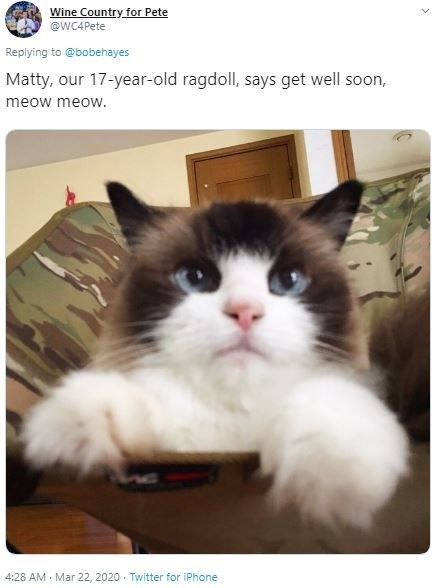 Cat - Wine Country for Pete @WC4Pete Replying to @bobehayes Matty, our 17-year-old ragdoll, says get well soon, meow meow. 4:28 AM - Mar 22, 2020 · Twitter for iPhone