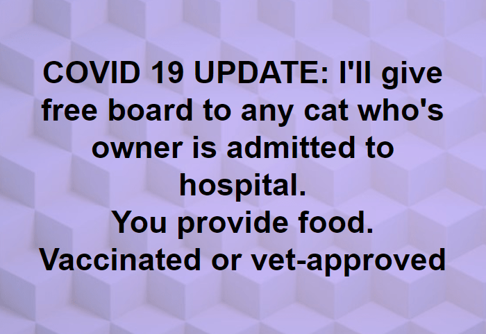 Text - COVID 19 UPDATE: I'll give free board to any cat who's owner is admitted to hospital. You provide food. Vaccinated or vet-approved