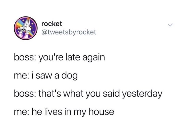 Text - rocket @tweetsbyrocket boss: you're late again me: i saw a dog boss: that's what you said yesterday me: he lives in my house