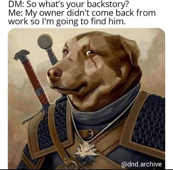 Canidae - DM: So what's your backstory? Me: My owner didn't come back from work so I'm going to find him. @dnd.archive