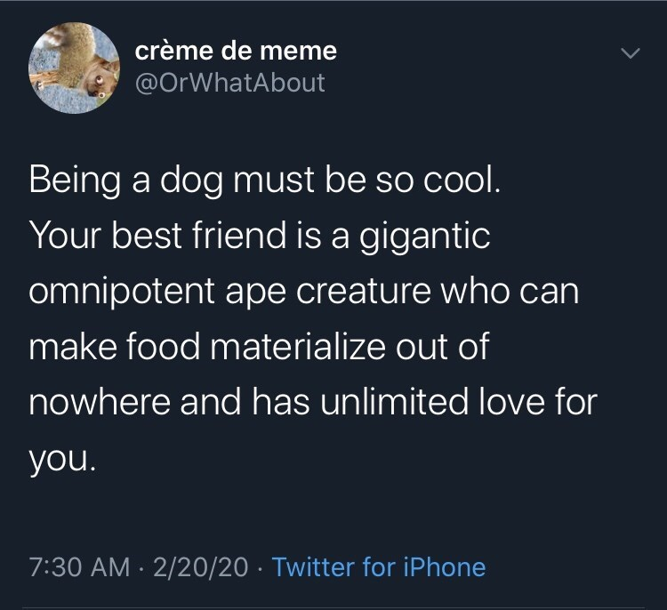 Text - crème de meme @OrWhatAbout Being a dog must be so cool. Your best friend is a gigantic omnipotent ape creature who can make food materialize out of nowhere and has unlimited love for you. 7:30 AM · 2/20/20 · Twitter for iPhone