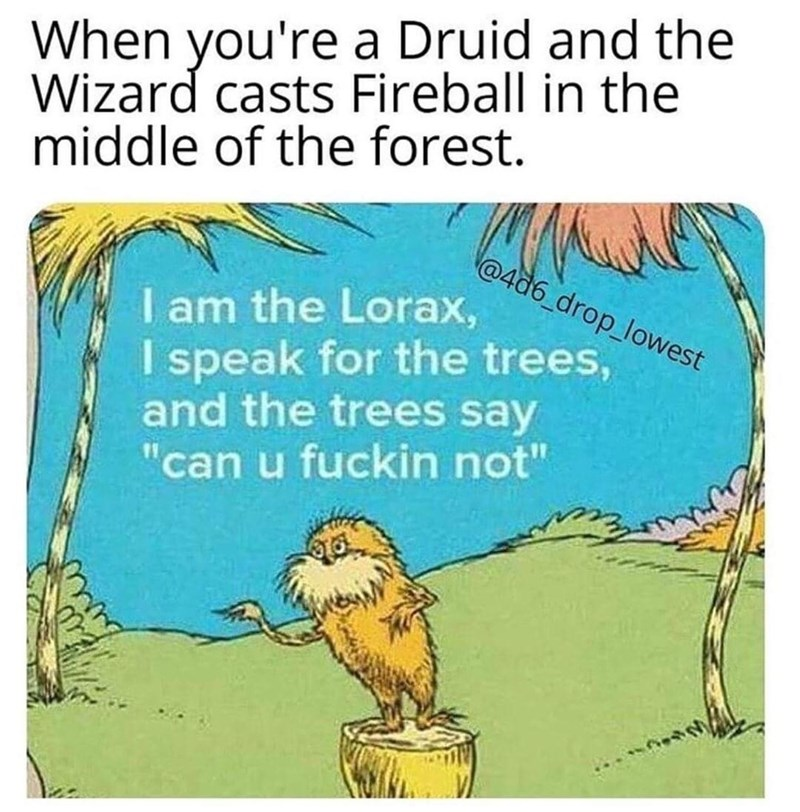 """funny meme - Organism - When you're a Druid and the Wizard casts Fireball in the middle of the forest. @4d6_drop_lowest I am the Lorax, I speak for the trees, and the trees say """"can u fuckin not"""""""