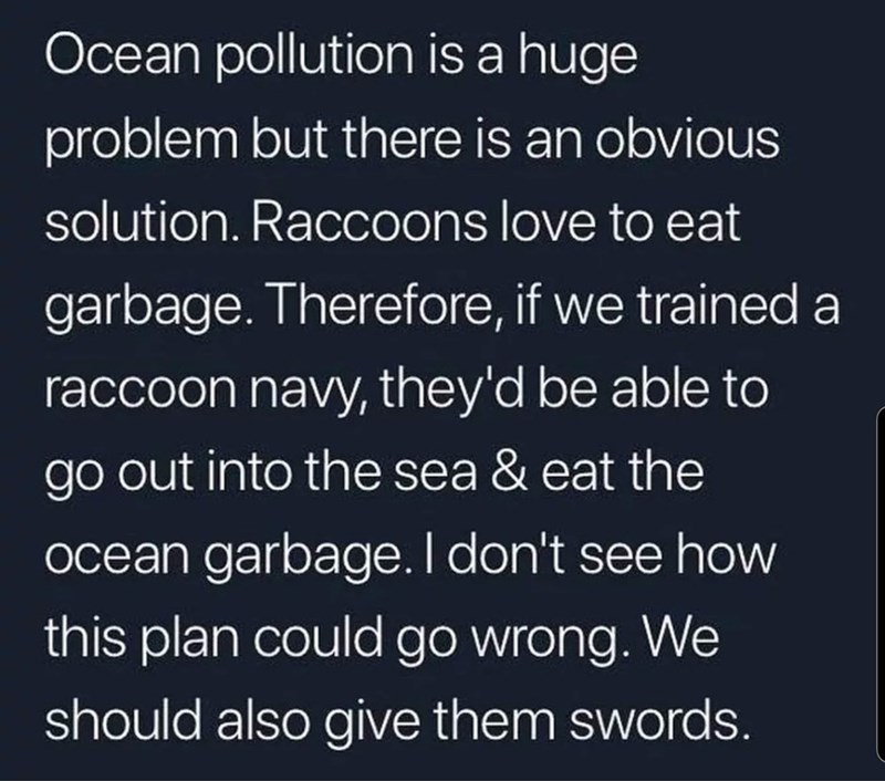 Text - Ocean pollution is a huge problem but there is an obvious solution. Raccoons love to eat garbage. Therefore, if we trained a raccoon navy, they'd be able to go out into the sea & eat the ocean garbage.I don't see how this plan could go wrong. We should also give them swords.
