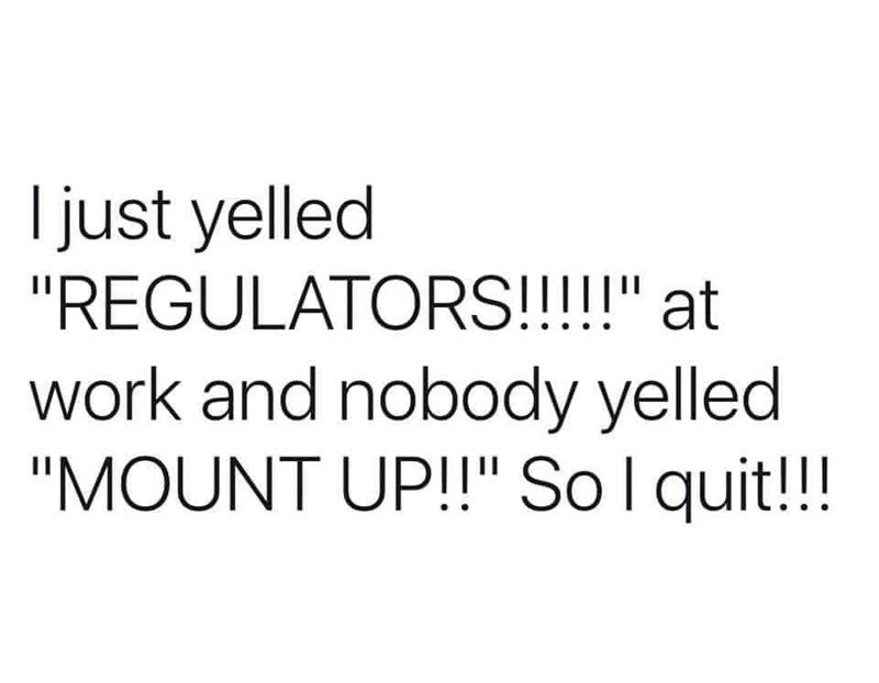 "Text - I just yelled ""REGULATORS!!!!"" at work and nobody yelled ""MOUNT UP!!"" Sol quit!!!"