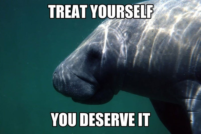 Manatee - TREAT YOURSELF YOU DESERVE IT
