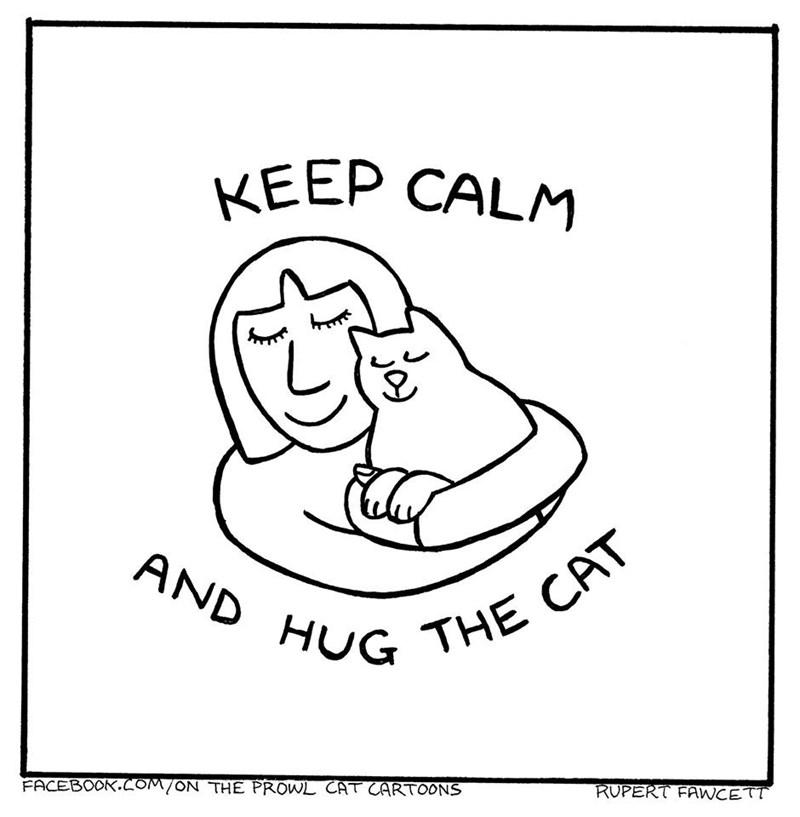 White - KEEP CALM AND HUG THE CAT FACEBOOK.COM/ON THE PROWL CAT CARTOONS RUPERT FAWCETT