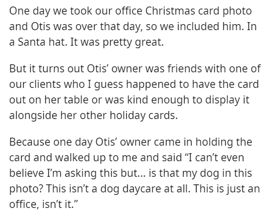 """Text - One day we took our office Christmas card photo and Otis was over that day, so we included him. In a Santa hat. It was pretty great. But it turns out Otis' owner was friends with one of our clients who I guess happened to have the card out on her table or was kind enough to display it alongside her other holiday cards. Because one day Otis' owner came in holding the card and walked up to me and said """"I can't even believe I'm asking this but... is that my dog in this photo? This isn't a do"""