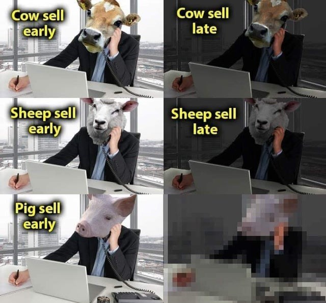 Outerwear - Cow sell early Cow sell late Sheep sell early Sheep sell late Pig sell early