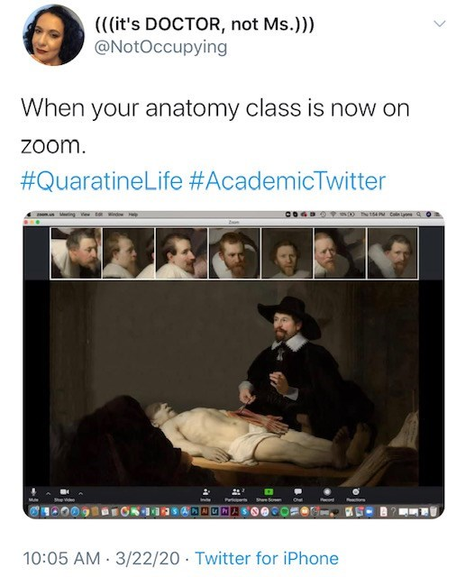 Text - (((it's DOCTOR, not Ms.))) @NotOccupying When your anatomy class is now on Zoom. #QuaratineLife #AcademicTwitter ngVew t Windw esctiors 10:05 AM 3/22/20 Twitter for iPhone
