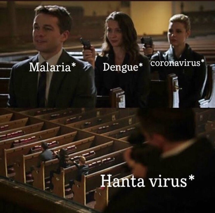 Musical instrument - coronavirus* Malaria* Dengue* Hanta virus*