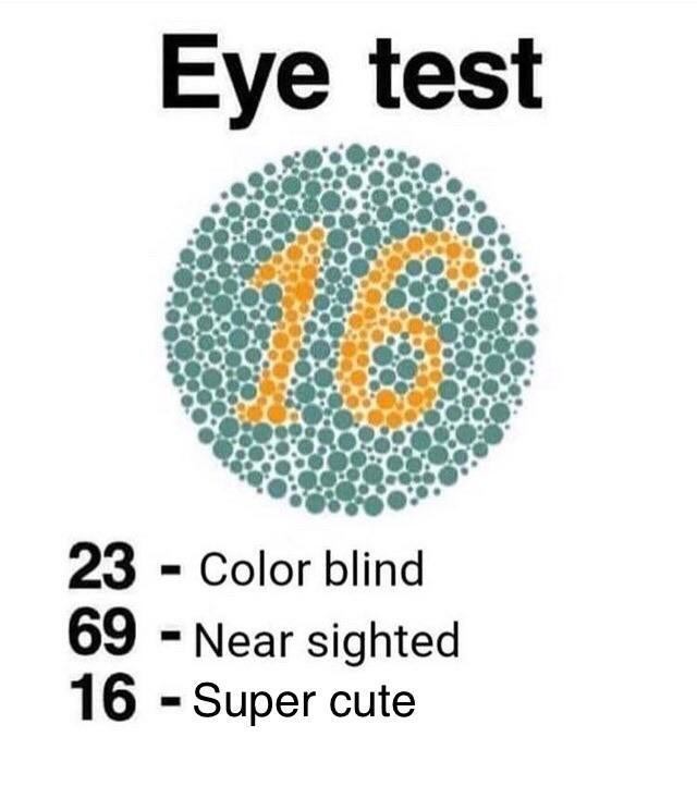 Text - Eye test 23 - Color blind 69 - Near sighted 16 - Super cute %3D