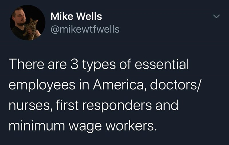 Text - Mike Wells @mikewtfwells There are 3 types of essential employees in America, doctors/ nurses, first responders and minimum wage workers.
