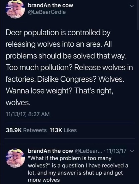 """Text - Text - brandAn the cow @LeBearGirdle Deer population is controlled by releasing wolves into an area. All problems should be solved that way. Too much pollution? Release wolves in factories. Dislike Congress? Wolves. Wanna lose weight? That's right, wolves. 11/13/17, 8:27 AM 38.9K Retweets 113K Likes brandAn the cow @LeBear... · 11/13/17 ▼ """"What if the problem is too many wolves?"""" is a question I have received a lot, and my answer is shut up and get more wolves"""
