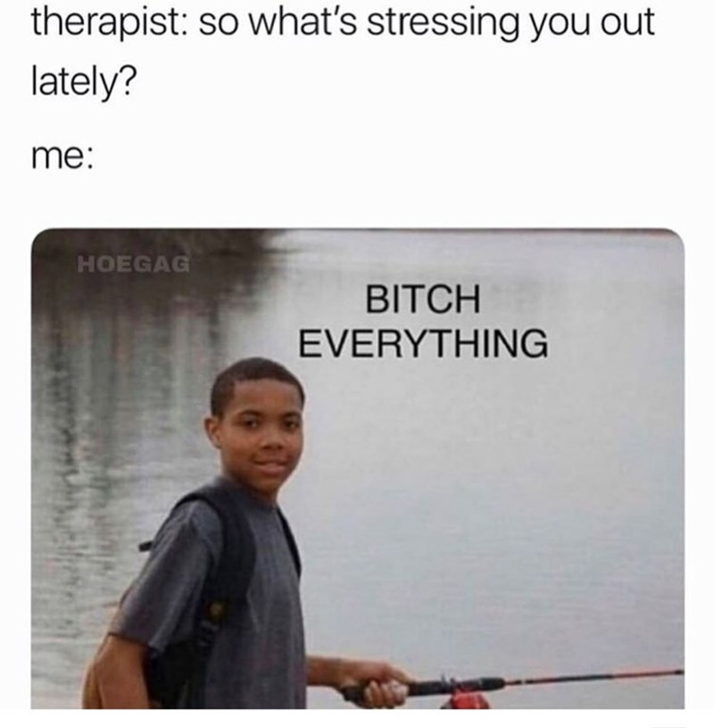 Text - Text - therapist: so what's stressing you out lately? me: HOEGAG BITCH EVERYTHING