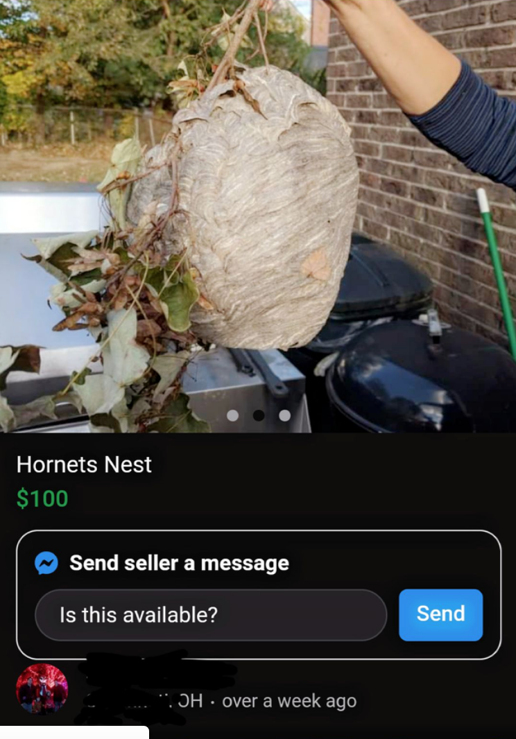 Rock - Hornets Nest $100 Send seller a message Is this available? Send *. ƆH · over a week ago