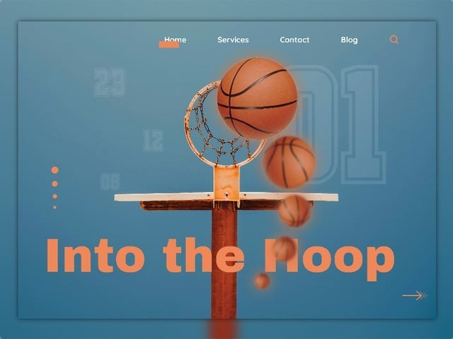 Basketball - Home Services Contact Blog 23 12 08 Into the Poop