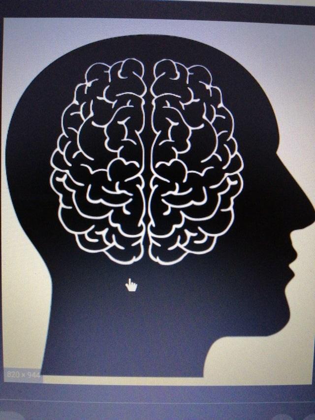 Brain - 820 x 944