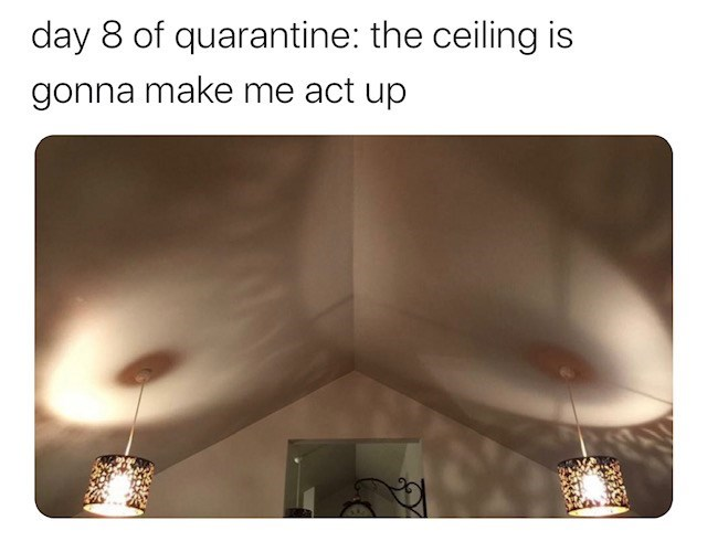 Text - day 8 of quarantine: the ceiling is gonna make me act up