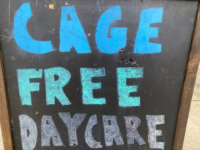 Font - CAGE FREE DAYCARE