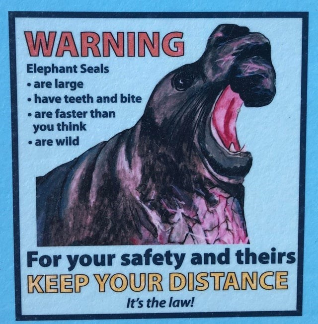 Poster - WARNING Elephant Seals • are large • have teeth and bite • are faster than you think • are wild For your safety and theirs KEEP YOUR DISTANCE It's the law!