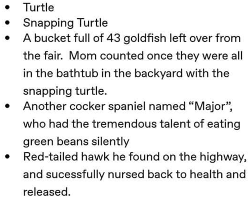 """Text - Turtle Snapping Turtle A bucket full of 43 goldfish left over from the fair. Mom counted once they were all in the bathtub in the backyard with the snapping turtle. Another cocker spaniel named """"Major"""", who had the tremendous talent of eating green beans silently Red-tailed hawk he found on the highway, and sucessfully nursed back to health and released."""