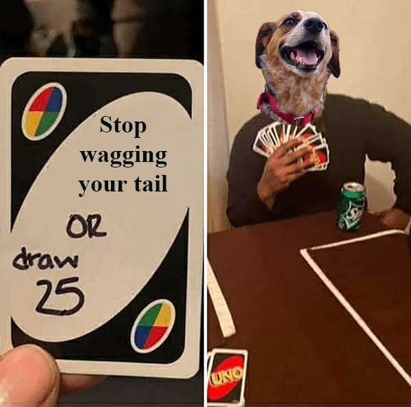 Games - Stop wagging your tail OR draw 25 UNO