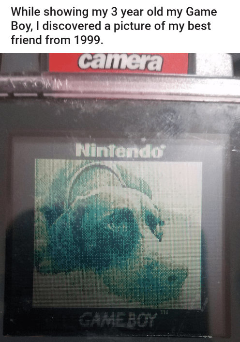 Text - While showing my 3 year old my Game Boy, I discovered a picture of my best friend from 1999. camera Nintendo GAMEBOY