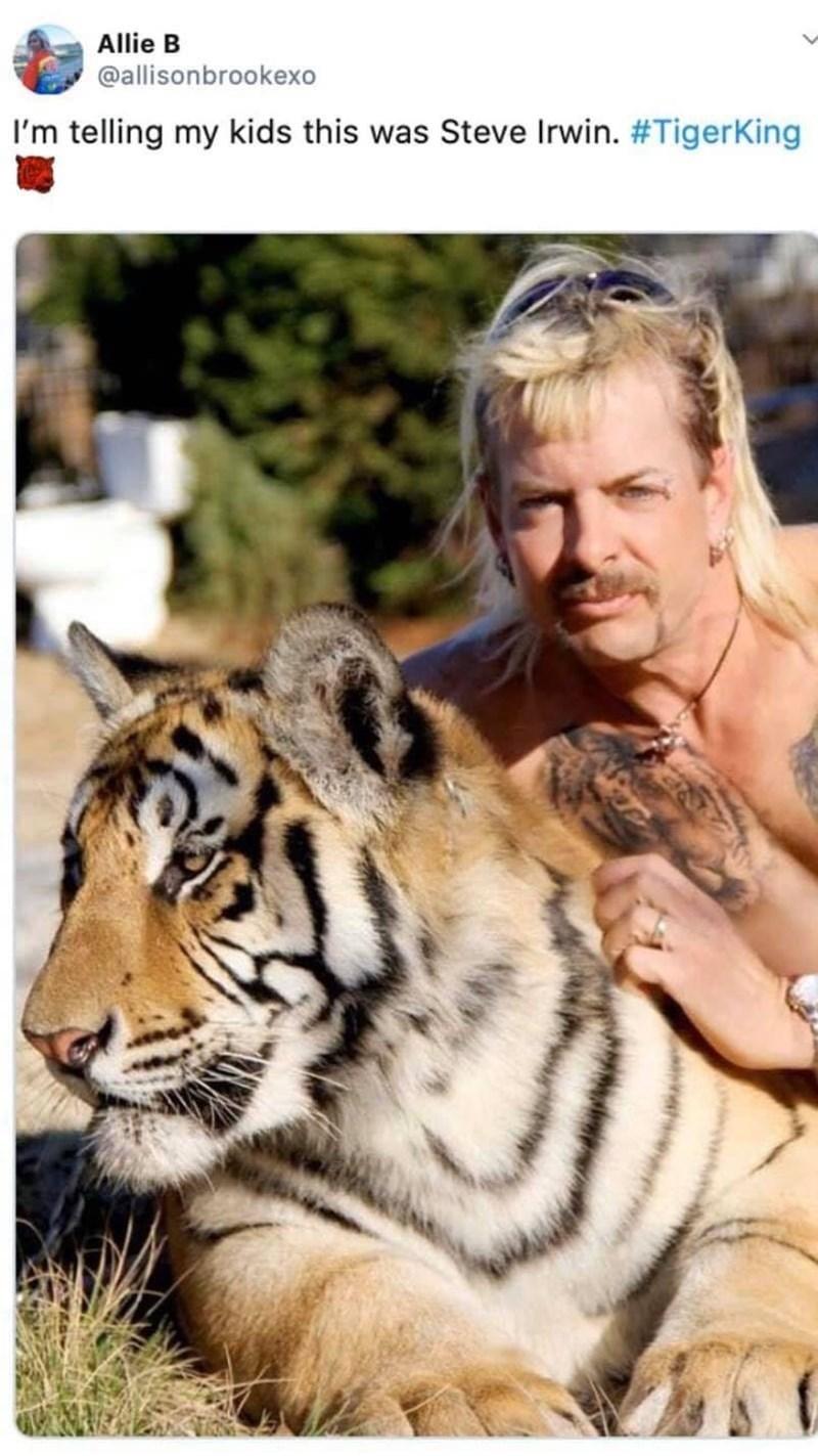Tiger - Allie B @allisonbrookexo I'm telling my kids this was Steve Irwin. #TigerKing
