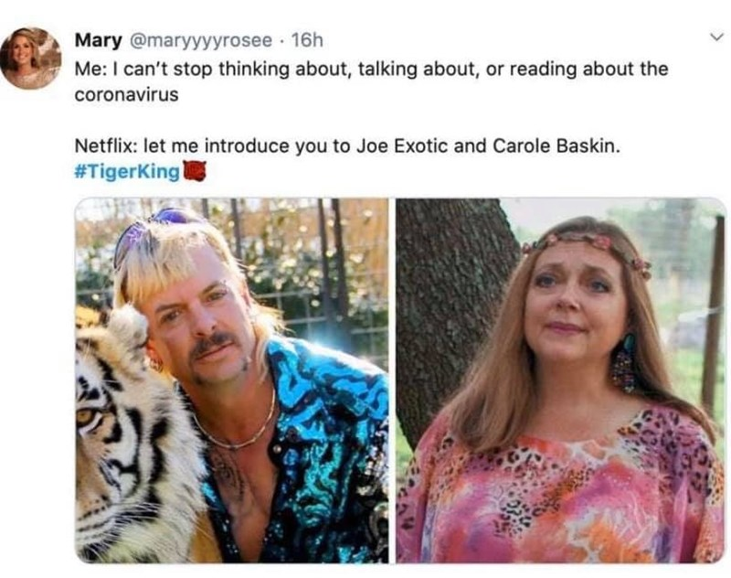 Hair - Mary @maryyyyrosee · 16h Me: I can't stop thinking about, talking about, or reading about the coronavirus Netflix: let me introduce you to Joe Exotic and Carole Baskin. #TigerKing