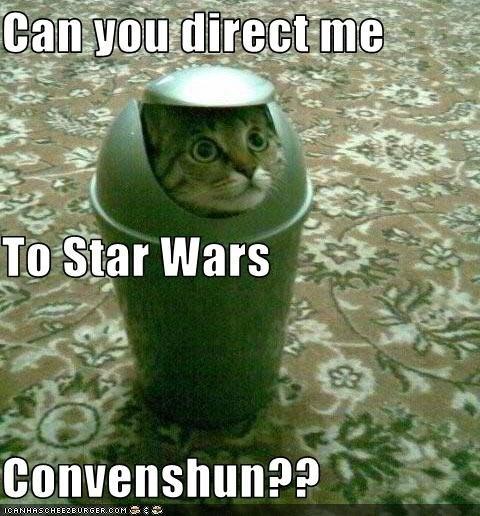 Cat - Can you direct me To Star Wars Convenshun?? ICANHASC HEEZE URGER.COM