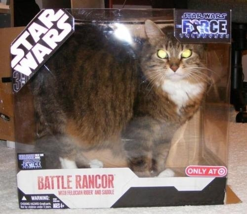 Cat - STARWARS FRCE ONLY ATO BATTLE RANCOR WITH FELUCIAN RIDER AND SADOLE WARNING: STAR WARS