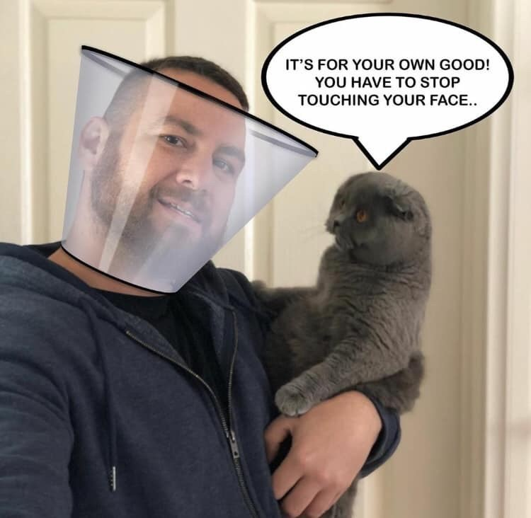 Cat - IT'S FOR YOUR OWN GOOD! YOU HAVE TO STOP TOUCHING YOUR FACE...