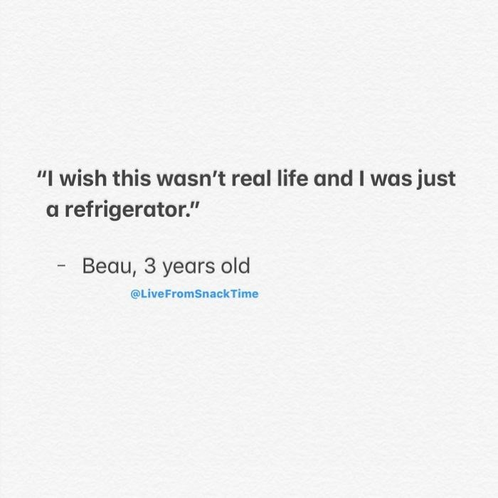 """Text - """"I wish this wasn't real life and I was just refrigerator."""" Beau, 3 years old @LiveFromSnack Time"""